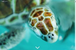 24 heures du SIG : un travail au long cours contre la pollution marine