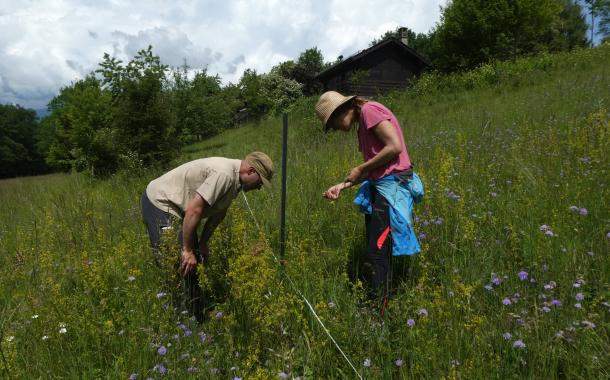 Biodiversité : la carte en guise de signal d'alarme