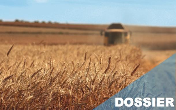 Agriculture : le bon rendement du SIG