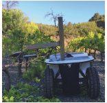 Robot viticulteur