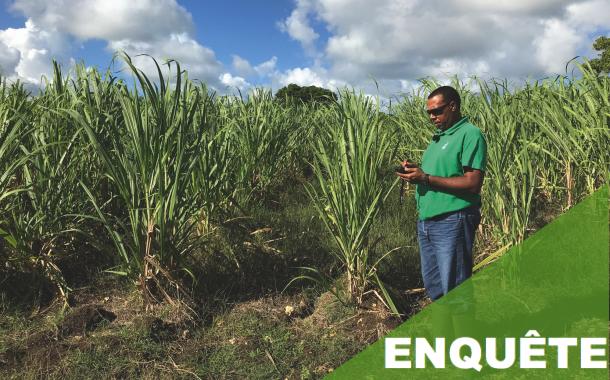 Espace Sud Martinique : Satisfaire aux besoins des métiers et des élus