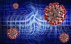Coronavirus et menaces informatiques:  points communs et enseignements