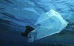 Nouvelle expédition contre le plastique